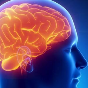 Лечение ликворной кисты головного мозга в Израиле
