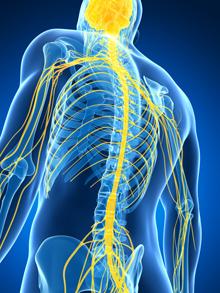 Лечение нервной системы в Израиле